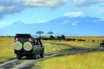 Tansania.Safari.Kilimanjaro Rundreise Erlebnisreisen