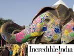 Indien Gujarat Elefant 01 Rundreise Erlebnisreisen